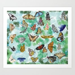 Butterflies watercolor natural shapes and patterns Art Print
