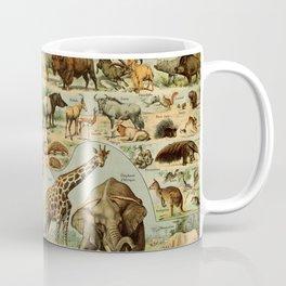 Adolphe Millot - Nouveau Larousse Illustré - Mammifères A (Mammals) (1906) Coffee Mug