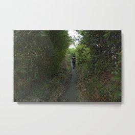 Path Metal Print