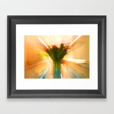 Flowers of Holland Framed Art Print