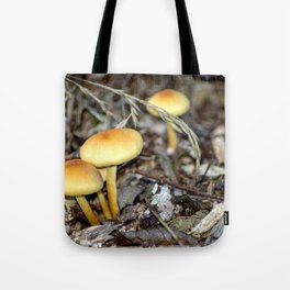 Concept nature : The unkown mushrooms Tote Bag
