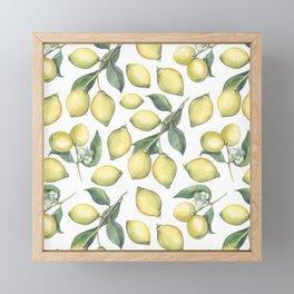 Lemon Fresh Framed Mini Art Print