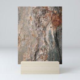 Maine Coast Rocks, No.1 Mini Art Print