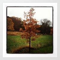Autumn in PA Art Print