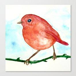 Redbreast Canvas Print