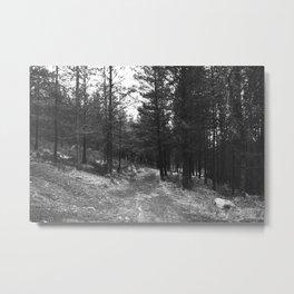 BLACK AND WHITE LAND Metal Print