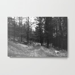 BLACK AND WHITE LAND Metal Print