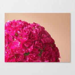 Girls 15th Birthday Canvas Print