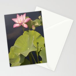 Lotus Flower by Teresa Thompson Stationery Cards