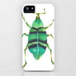 Beetle 2 iPhone Case