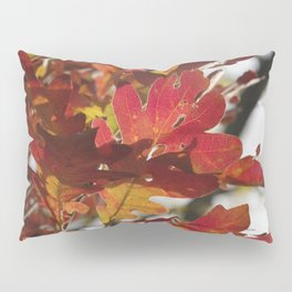 Oak Glow - Autumn Colors Pillow Sham