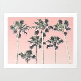Blush Palms Art Print