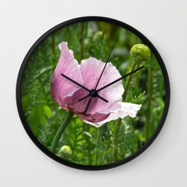 Sweet Pink Poppy with raindrops Wall Clock