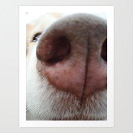 Sniff-Sniff Art Print
