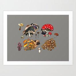 Botanical Mushroom Pug Art Print