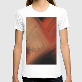 Interconnectedness T-shirt