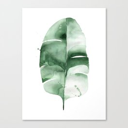 Banana Leaf no. 6 Canvas Print