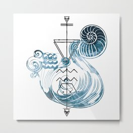 Water-Bearer / Aquarius Metal Print
