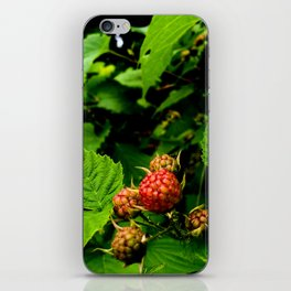 Almost Time for Rasberries iPhone Skin
