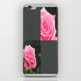 Pink Roses in Anzures 4 Blank Q6F0 iPhone Skin