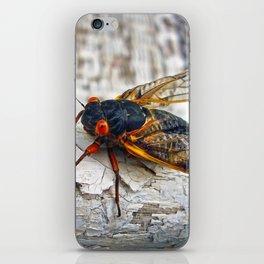 Red Eyed Cicada iPhone Skin