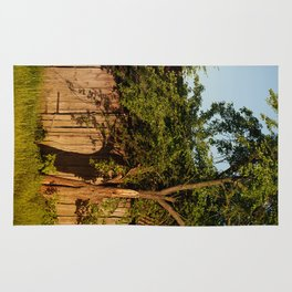 Dilapidated old wooden shack and tree shadow Rug