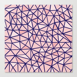 Broken Blush Canvas Print