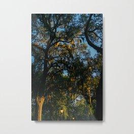 Savannah Forsyth Park Metal Print