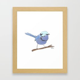 Superb Fairywren Framed Art Print