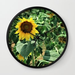Flower No 6 Wall Clock