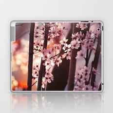 Pink Wind Laptop & iPad Skin