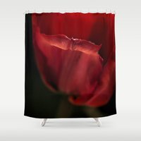 tulip Shower Curtains featuring tulip by HD Connelly