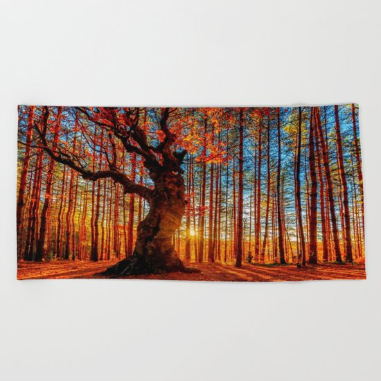 Majestic woods Beach Towel