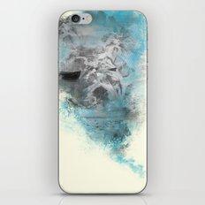 Remember iPhone & iPod Skin
