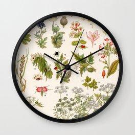 Adolphe Millot - Plantes vénéneuses - French vintage botanical illustration Wall Clock