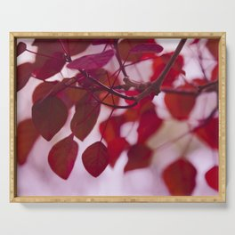 Red Leaves Serving Tray