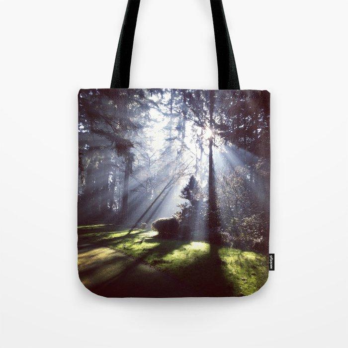 Sun rays through trees Tote Bag