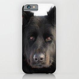 Long Haired Black German Shepherd Dog Portrait iPhone Case