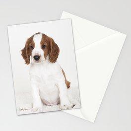 Wallovas Bonnie Tyler Stationery Cards