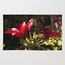 Red Lilys Rug