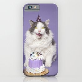 Happy Birthday Fat Cat In Party Hat With Cake iPhone Case
