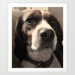 Beagle Love Art Print