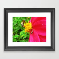 flora and wasp Framed Art Print