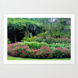Pergola Garden Art Print