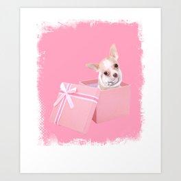 Cute Chihuahua In A Box - Chihuahua Puppy Lovers Gift Art Print