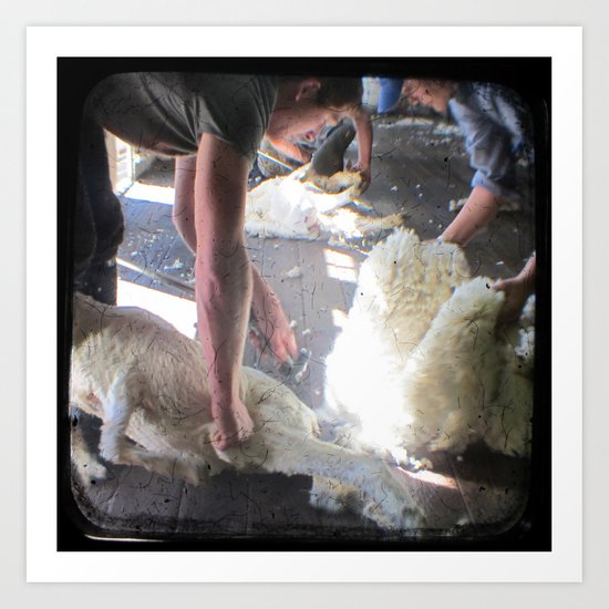 The Shearer - Through The Viewfinder - (TTV) Art Print