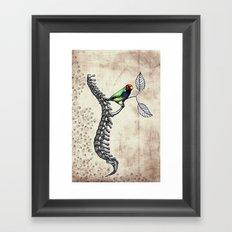 Chloebia Gouldiae Framed Art Print