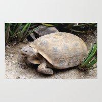 tortoise Area & Throw Rugs featuring Tortoise by lennyfdzz