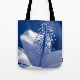 Enchanting Moments - Pua Aloalo - Koki'o Ke'oke'o - Hibiscus Arnottianus - Hawaiian White Hibiscus Tote Bag