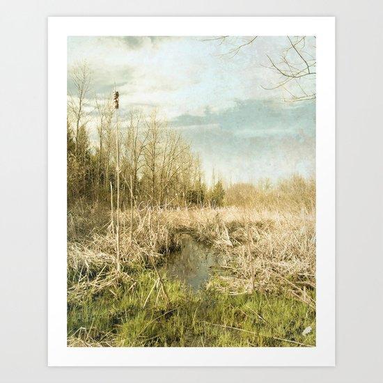 Peace and Solitude.   Art Print
